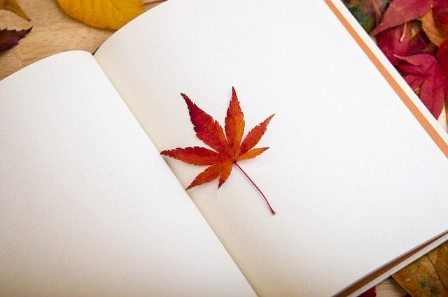 libros sobre wordpress para crear una web